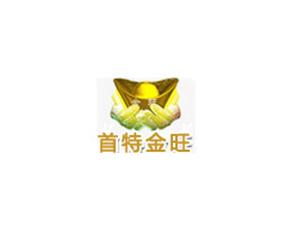 首特金旺(北京)国际机械设备有限公司