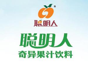 广东聪明人集团有限公司