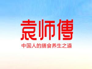 上海袁辰贸易有限公司