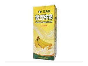 深圳诺诚食品有限公司