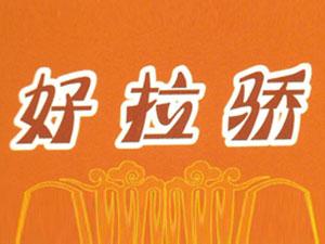 四川省成都市郫县宏皓调味厂企业LOGO