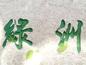 泰来县绿洲食品加工有限责任公司