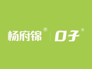 安徽杨府锦调味食品股份有限公司