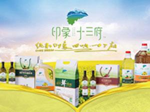 江西十三府食品有限公司