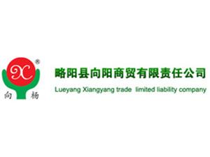 略阳县向阳商贸有限责任公司
