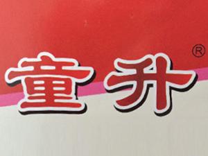 内江市童升食品有限公司