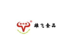 揭东雄飞食品厂