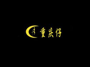 漯河市重庆仔食品开发有限公司