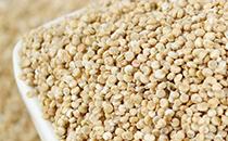 藜麦的功效与作用 以及食用方法和禁忌