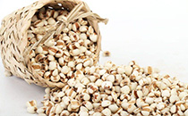 苡米的药用价值有什么