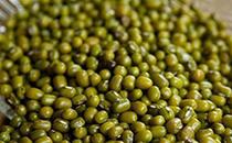绿豆不能和什么同时一起吃?看看就知道了!
