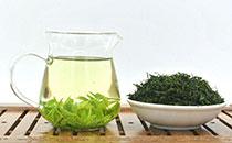 苦丁茶能减肥吗?苦丁茶的功效与作用