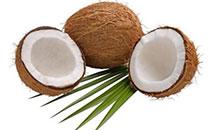 椰子粉的功效与作用