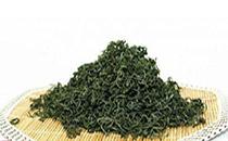 崂山绿茶怎么喝健康