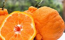 丑橘的�I�B�r值