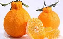 丑橘怎么保存
