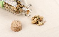 玳玳花茶的保存方法