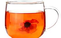 雪菊茶饮用禁忌人群