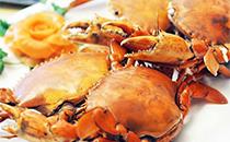 蟹中贵族 黄油蟹的前世今生