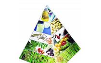 植物成分、蛋白质、纤维如何影响消费者的选择?