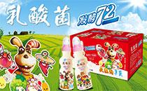 枣庄市康发乳酸菌饮品 口感浓郁 颜值爆表 经销商疯抢