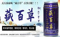 藏百草植物lehu国际app下载草本植物熬煮,抗击雾霾享受健康生活!