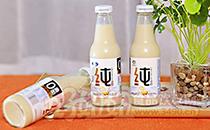 燕塞关纯豆奶,饮料市场中的爆品,风靡全国市场!