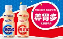 常喝养胃多,肠道更轻松!康发养胃多乳酸菌助您抢占春节市场!