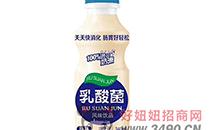 选好品,赚大钱!童牧乳酸菌风味饮品市场爆品,风靡市场!