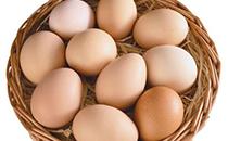新西兰鸡蛋价格创历史新高