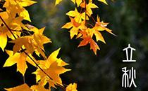"""立秋了,记得""""食五果"""",这5种水果别放过,缓解秋燥,入秋多吃"""