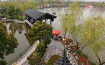上海南汇桃花村欢迎您
