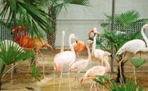 山西糖酒会旅游-太原动物园