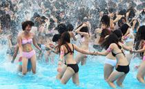 亚洲最大的水上乐园――广州长隆水上乐园