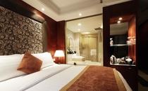 合肥明珠国际大酒店(原合肥索菲特明珠国际大酒店)