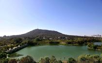 合肥蜀山森林公园景点介绍