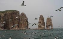 海上仙山――烟台蓬莱长岛