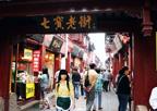 第十六届亚洲食品配料展旅游景点-七宝老街