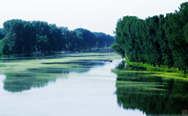 北京汉石桥湿地公园自然保护区