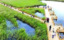 黄河口湿地生态园-东营糖酒会推荐旅游景点