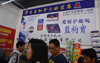 淄博港牛乳业打造中国蓝莓果汁第一品牌