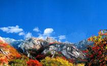嵩山旅游风景区欢迎您