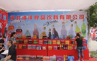 河北海洋食品饮料有限公司在2015漯河食博会招商火爆