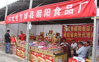 河南省方城县朝阳食品厂参加第十三届漯河食品博览会