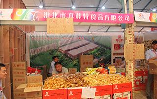 淮北市真棒特食品参加2015漯河食品博览会