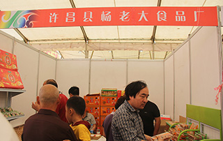 许昌县杨老大食品厂参展2015漯河食品展
