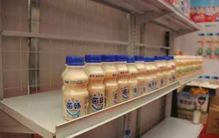 枣庄旭康食品迷尼熊乳酸菌产品在2015年漯河食博会现场受欢迎