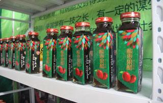 北京金月饮品酸枣果醋在2015徐州糖酒会上招商