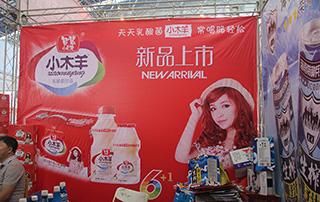小木羊乳酸菌饮品新品上市