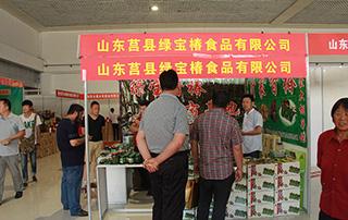山东莒县绿宝椿食品有限公司2015临沂糖酒会展位风采